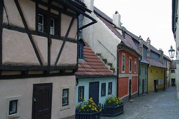 Arany utcácska
