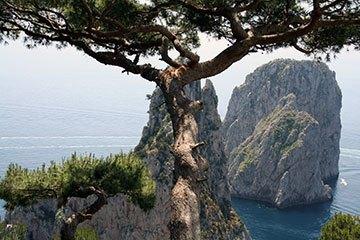 Capri repülőjegy