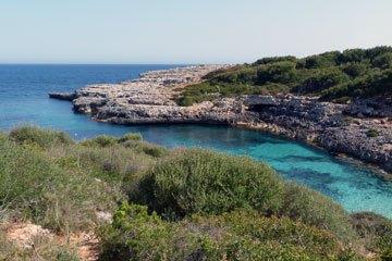Mallorca repülőjegy